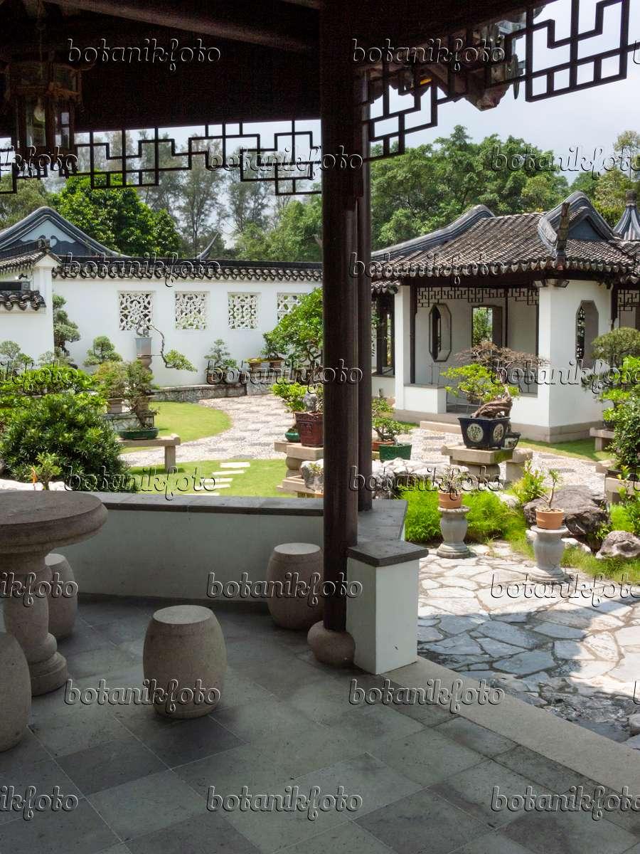 bilder chinesische g rten bilder und videos von pflanzen und g rten botanikfoto. Black Bedroom Furniture Sets. Home Design Ideas