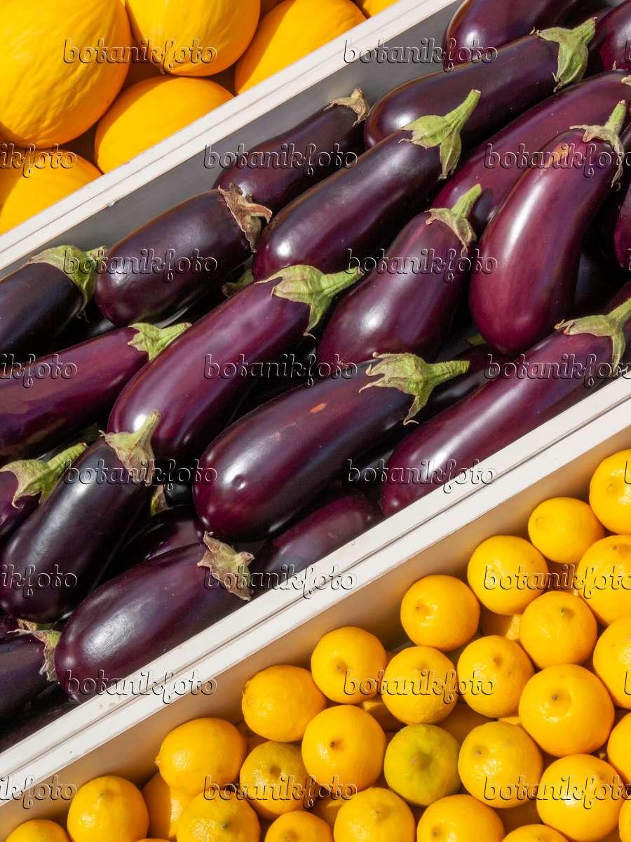 bild aubergine solanum melongena und zitrone citrus limon 403038 bilder und videos von. Black Bedroom Furniture Sets. Home Design Ideas