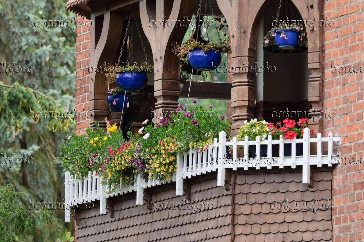 bild balkon mit sommerblumen 475022 bilder und videos von pflanzen und g rten botanikfoto. Black Bedroom Furniture Sets. Home Design Ideas