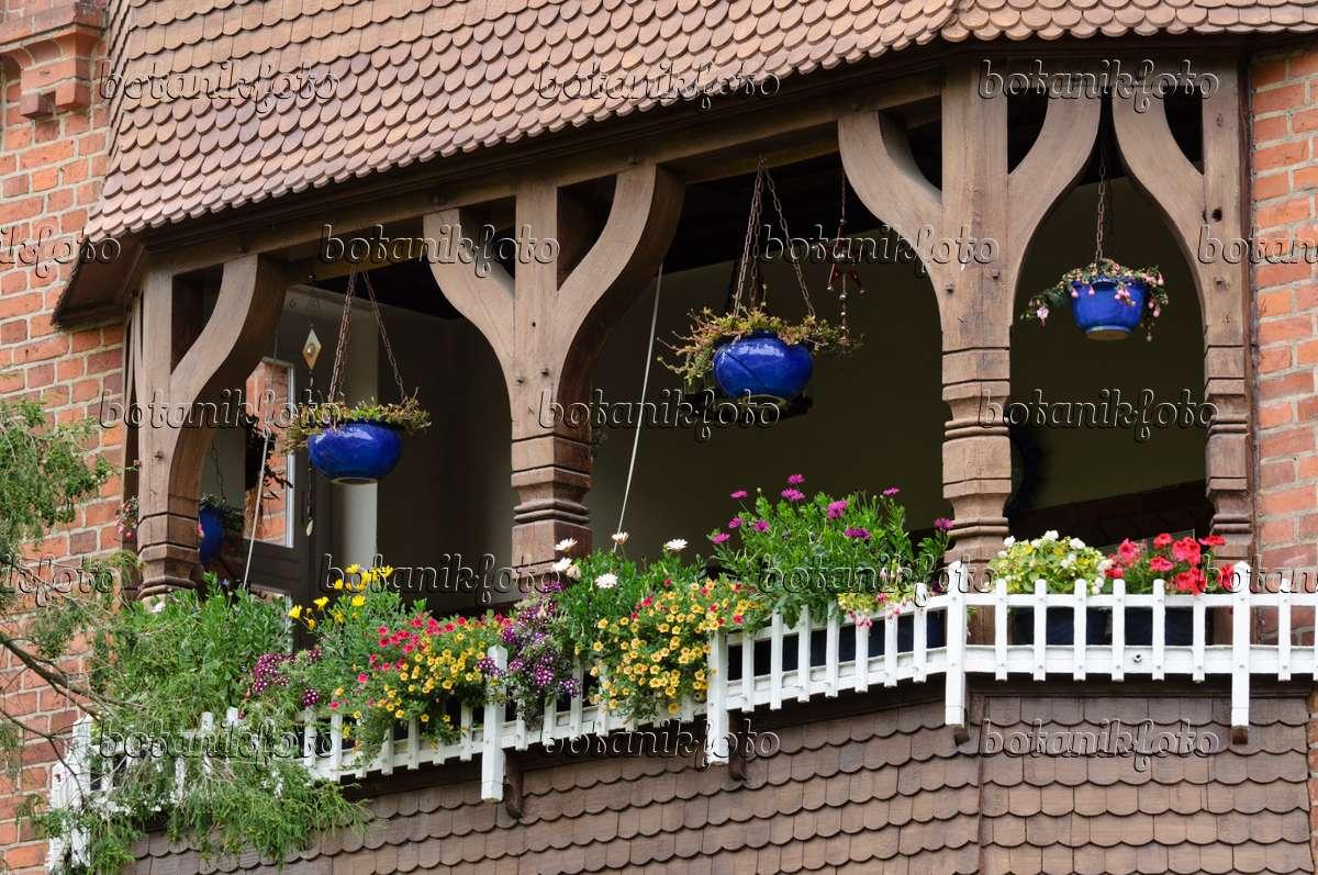bild balkon mit sommerblumen 475023 bilder und videos von pflanzen und g rten botanikfoto. Black Bedroom Furniture Sets. Home Design Ideas