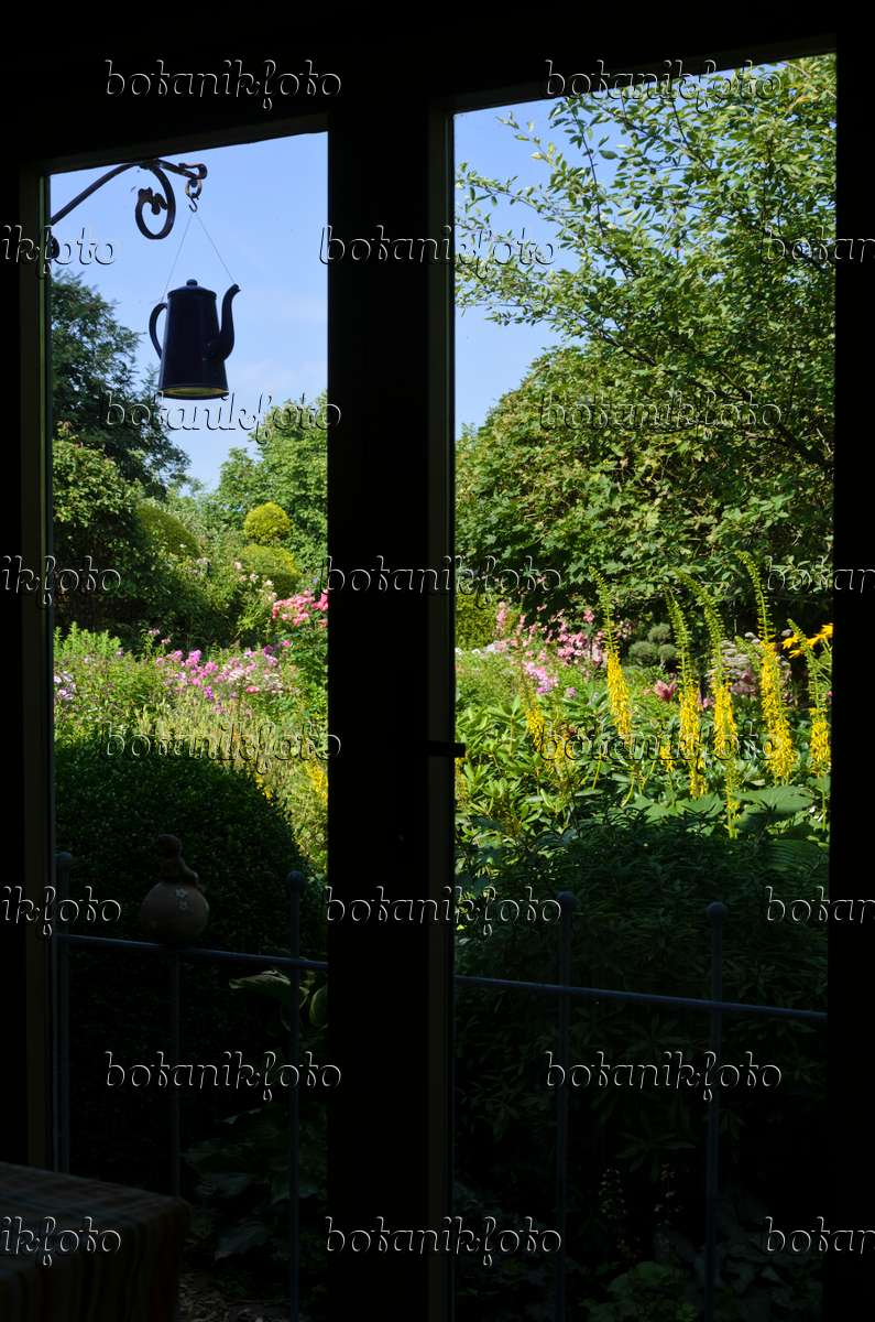 bild blick aus dem fenster in einen staudengarten 570083 bilder und videos von pflanzen und. Black Bedroom Furniture Sets. Home Design Ideas