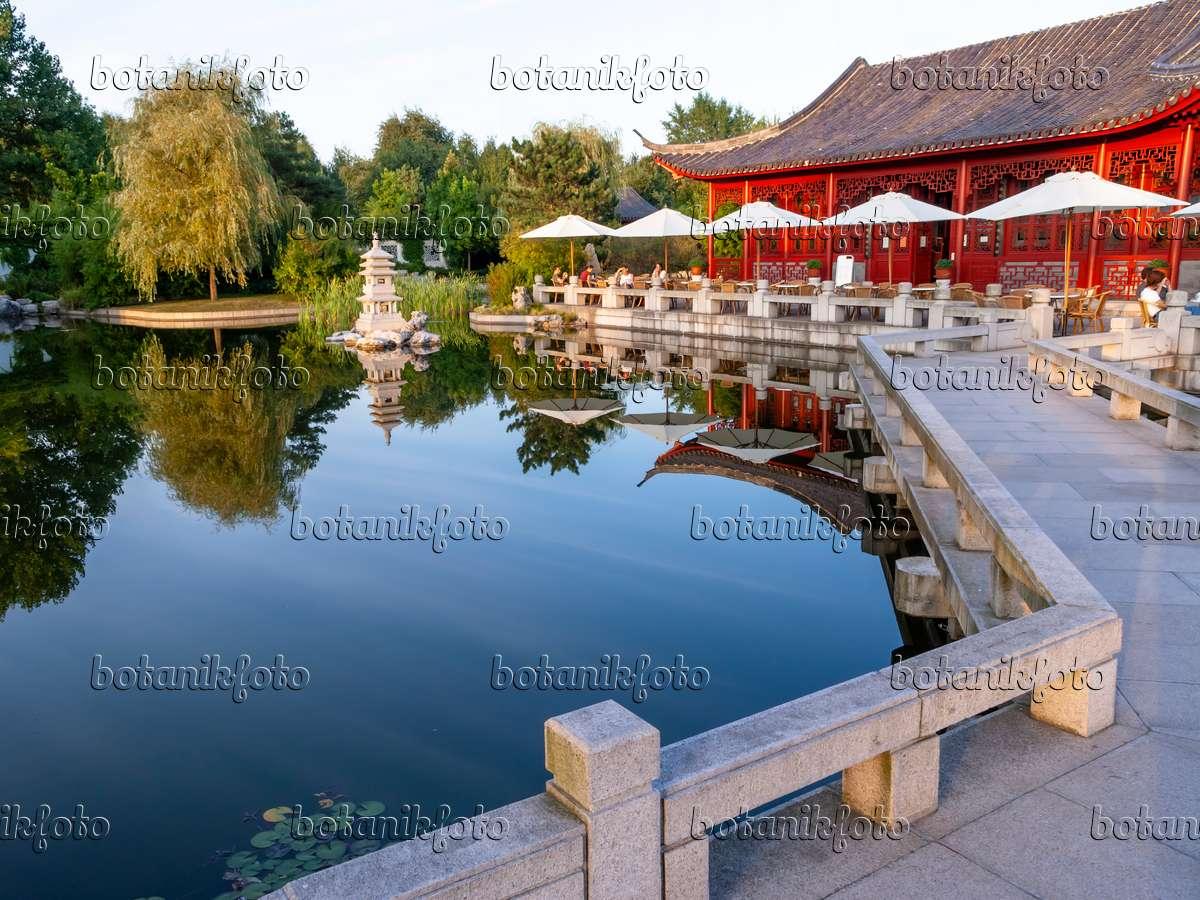 bild chinesischer garten erholungspark marzahn berlin deutschland 429056 bilder und. Black Bedroom Furniture Sets. Home Design Ideas