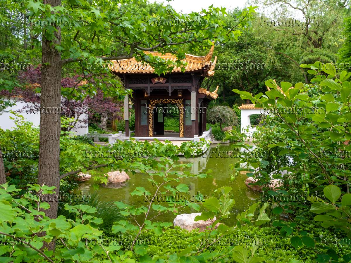bild chinesischer garten, westpark, münchen, deutschland - 426093, Hause und Garten
