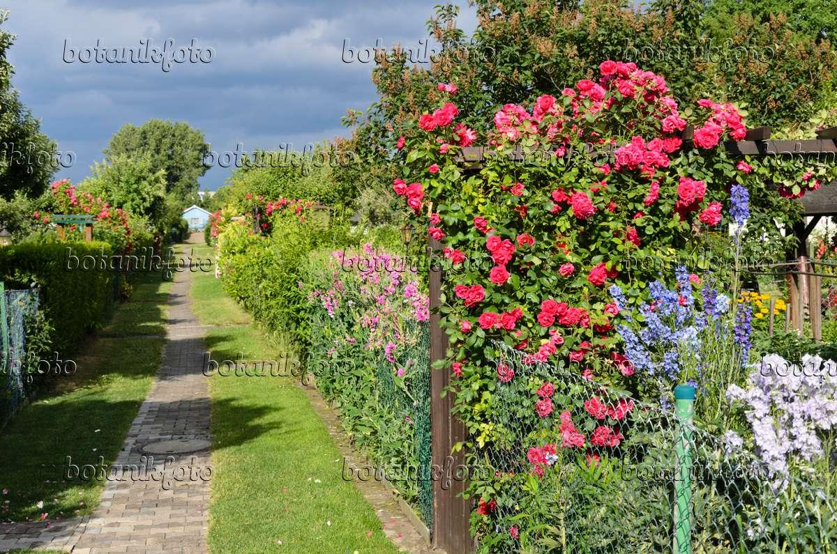 Bild Kleingarten Mit Blauem Zaun 477002 Bilder Und Videos Von