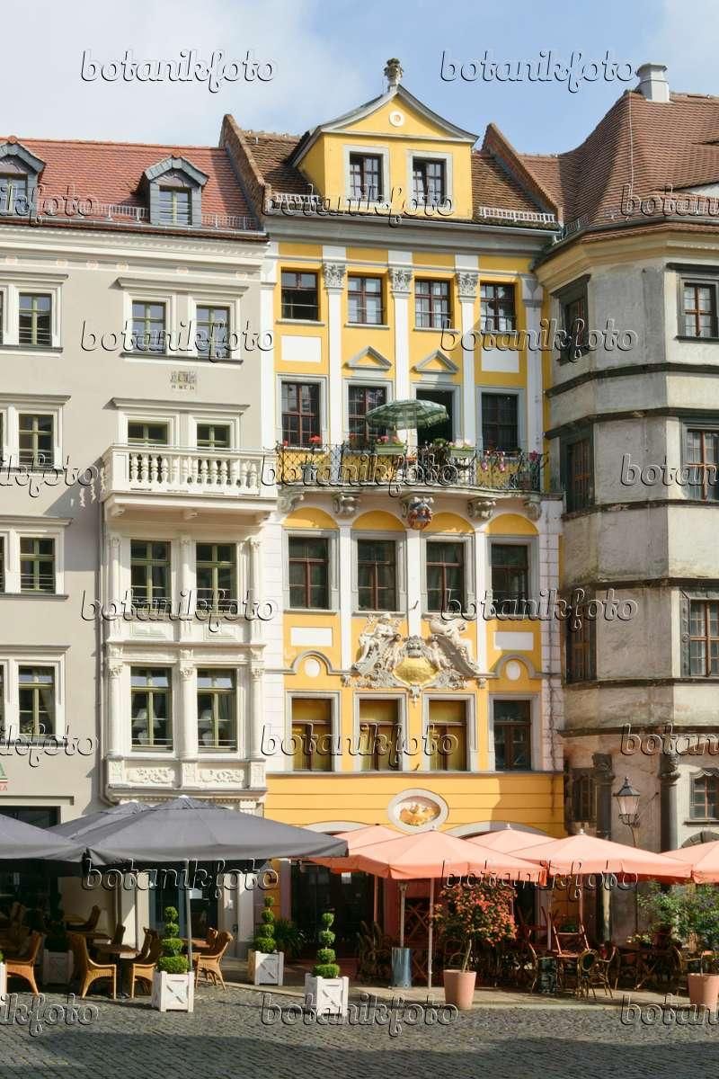 bild h user am marktplatz g rlitz deutschland 559050 bilder und videos von pflanzen und. Black Bedroom Furniture Sets. Home Design Ideas