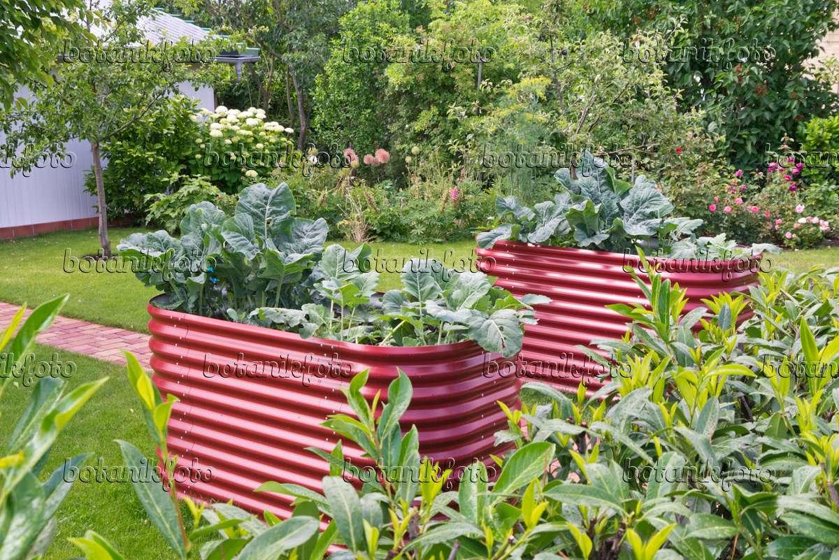 bild hochbeet aus wellblech 572115 bilder und videos von pflanzen und g rten botanikfoto. Black Bedroom Furniture Sets. Home Design Ideas