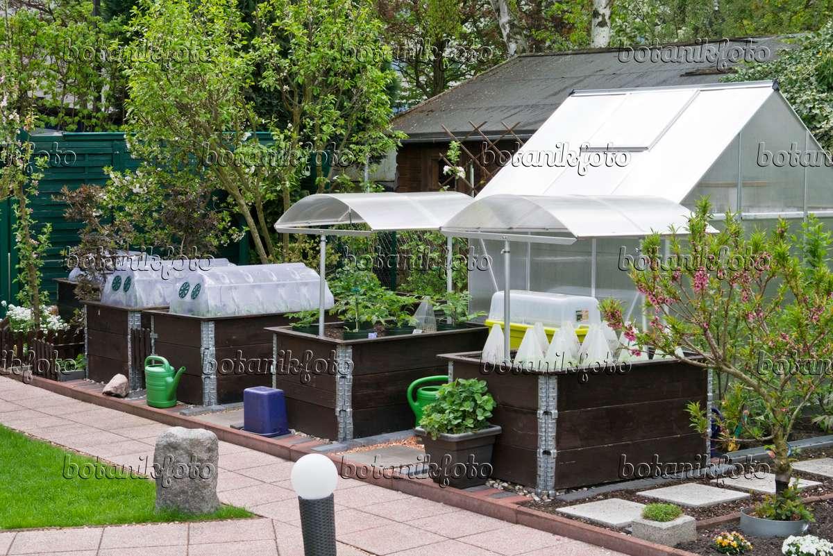 Bild Hochbeete Fruhbeete Und Gewachshaus In Einem Kleingarten