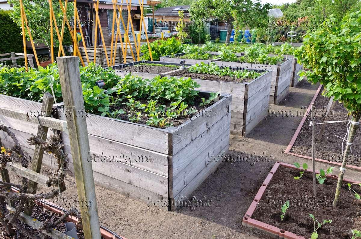 gemusegarten hochbeet – proxyagent, Gartenarbeit ideen