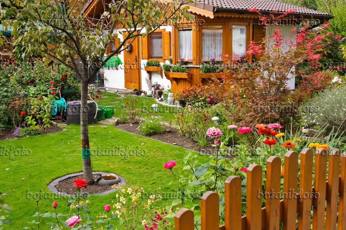bild kleingarten mit holzlaube 477001 bilder und videos von pflanzen und g rten botanikfoto. Black Bedroom Furniture Sets. Home Design Ideas