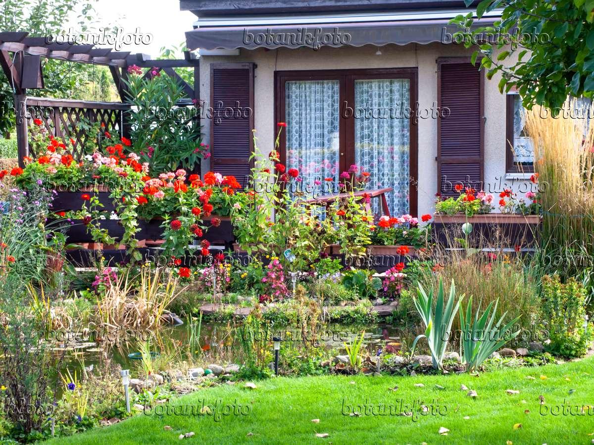 bild kleingarten mit laube und gartenteich 477127 bilder und videos von pflanzen und g rten. Black Bedroom Furniture Sets. Home Design Ideas