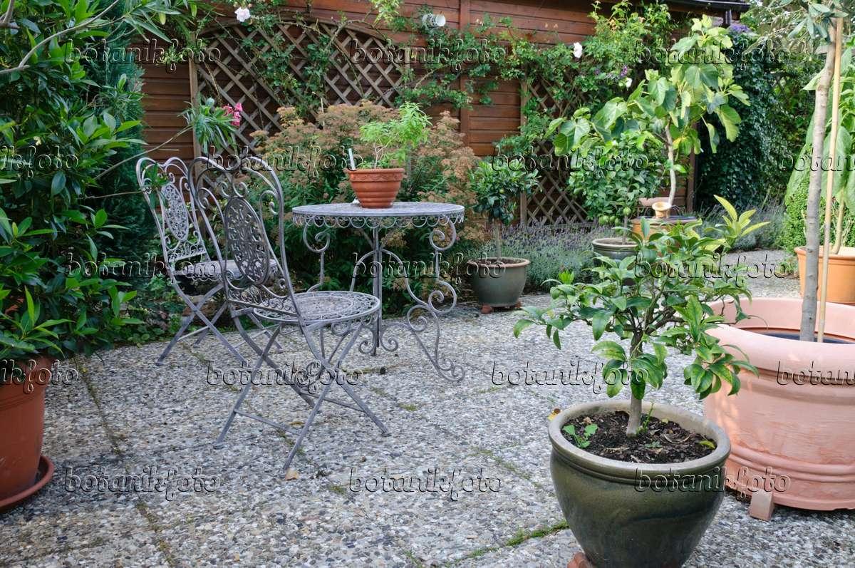 Bild sitzplatz mit k belpflanzen 474442 bilder und - Topfpflanzen garten ...