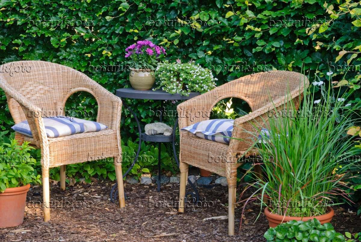 bild sitzplatz vor einer buchenhecke 500219 bilder und. Black Bedroom Furniture Sets. Home Design Ideas