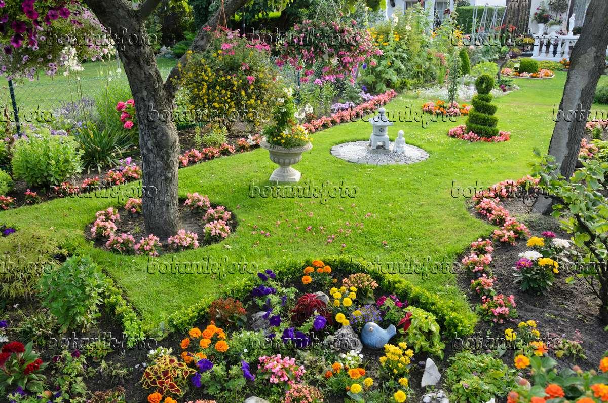 bild sommerblumen in einem kleingarten 534285 bilder und videos von pflanzen und g rten. Black Bedroom Furniture Sets. Home Design Ideas