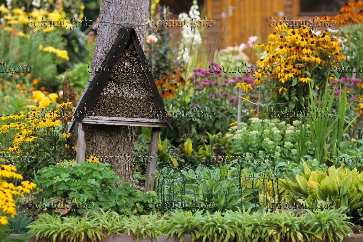 bild staudenbeet mit nisthilfe f r insekten 432014 bilder und videos von pflanzen und g rten. Black Bedroom Furniture Sets. Home Design Ideas