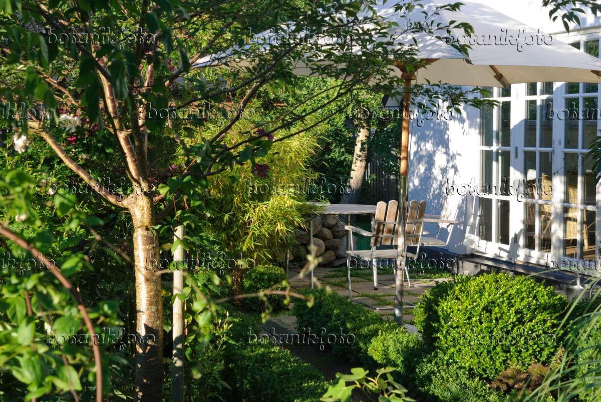 bild terrasse mit sonnenschirm tisch und zwei st hlen 475269 bilder und videos von pflanzen. Black Bedroom Furniture Sets. Home Design Ideas