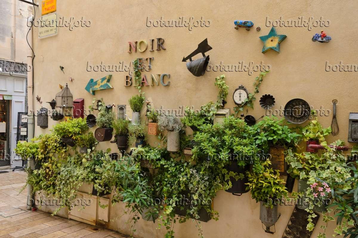 Bild topfgarten und dekoration an einer hauswand saint for Frankreich dekoration