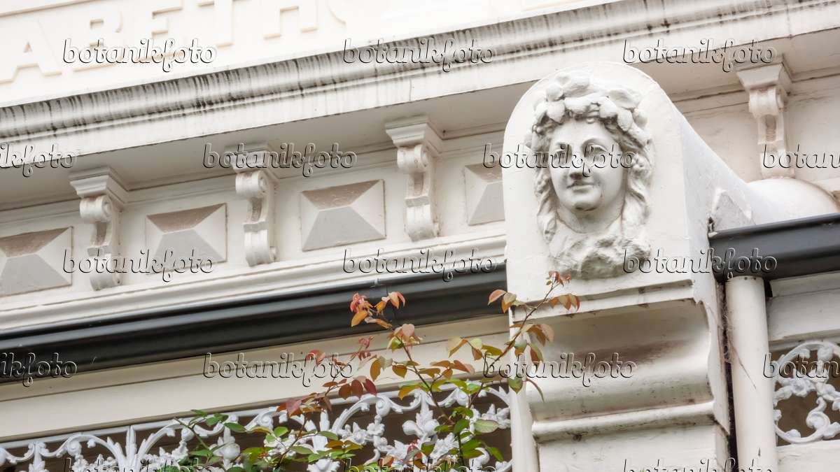 Bild verzierungen an der elizabeth terrace in der simpson for 18 jolimont terrace east melbourne