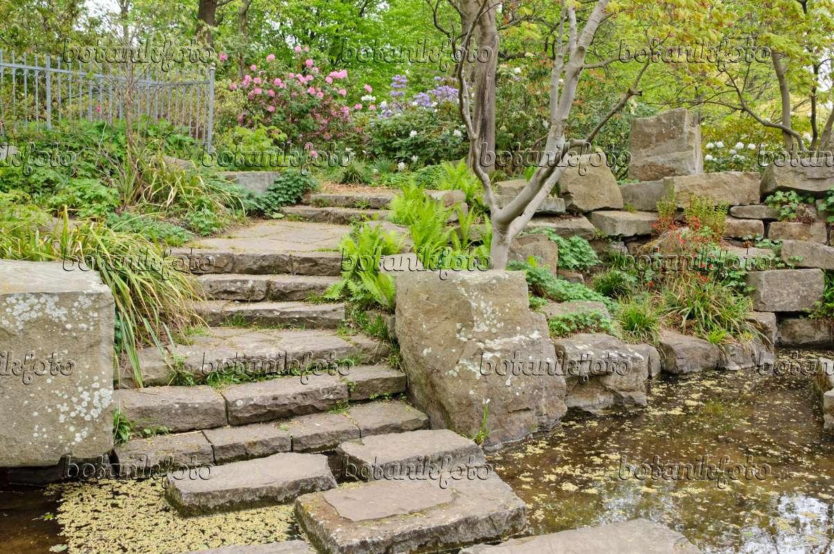 Bild wassergarten mit weg aus gro en steinbl cken britzer for Pflanzen bestellen berlin