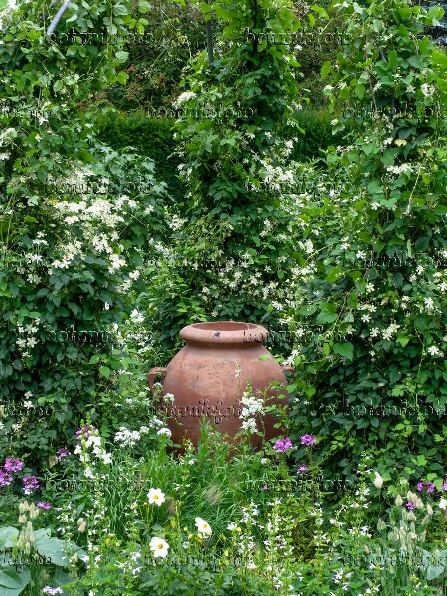 Weißer Garten bild weißer garten mit tonvase 462162 bilder und