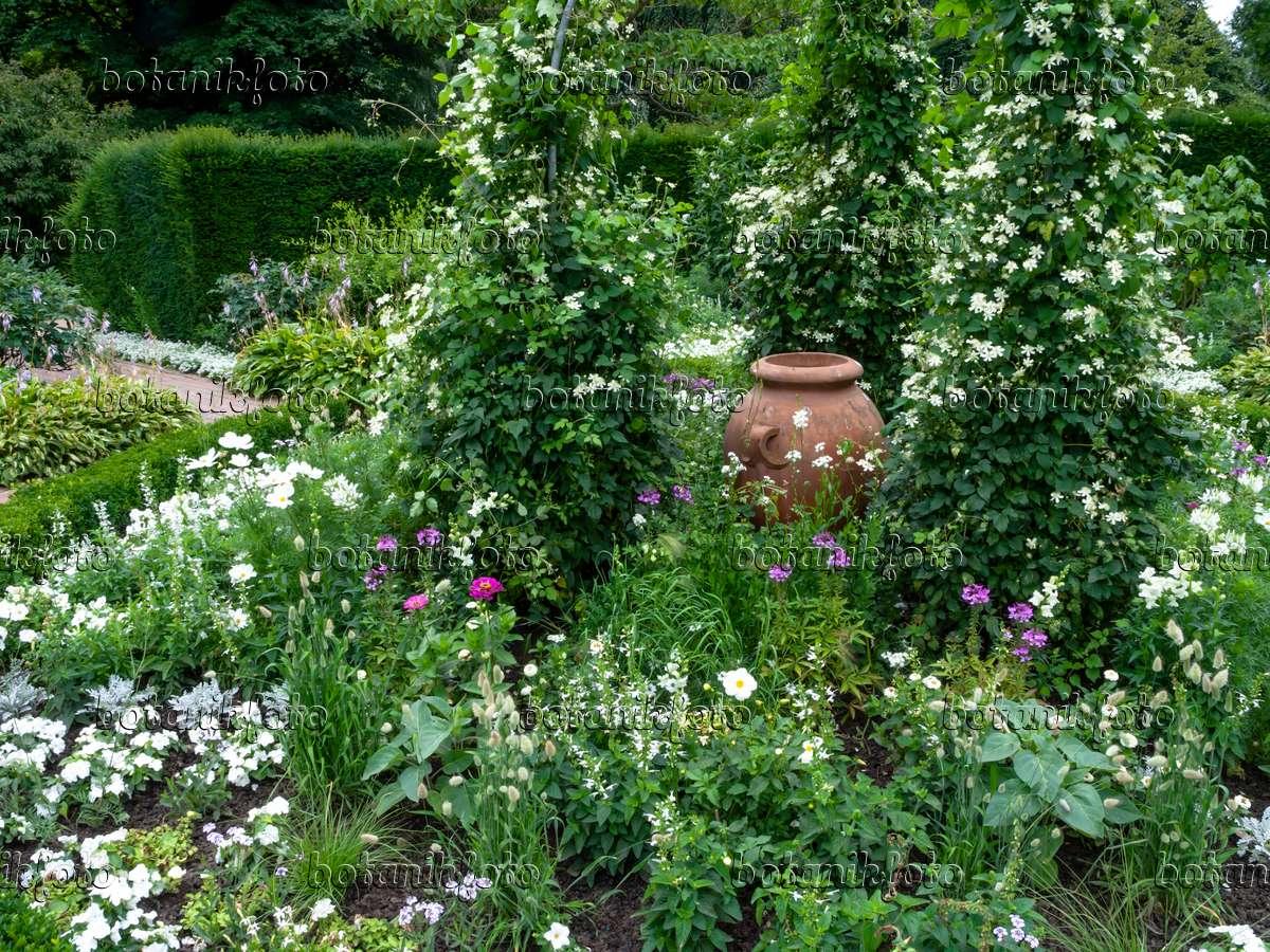 bild wei er garten mit tonvase 462163 bilder und videos von pflanzen und g rten botanikfoto. Black Bedroom Furniture Sets. Home Design Ideas
