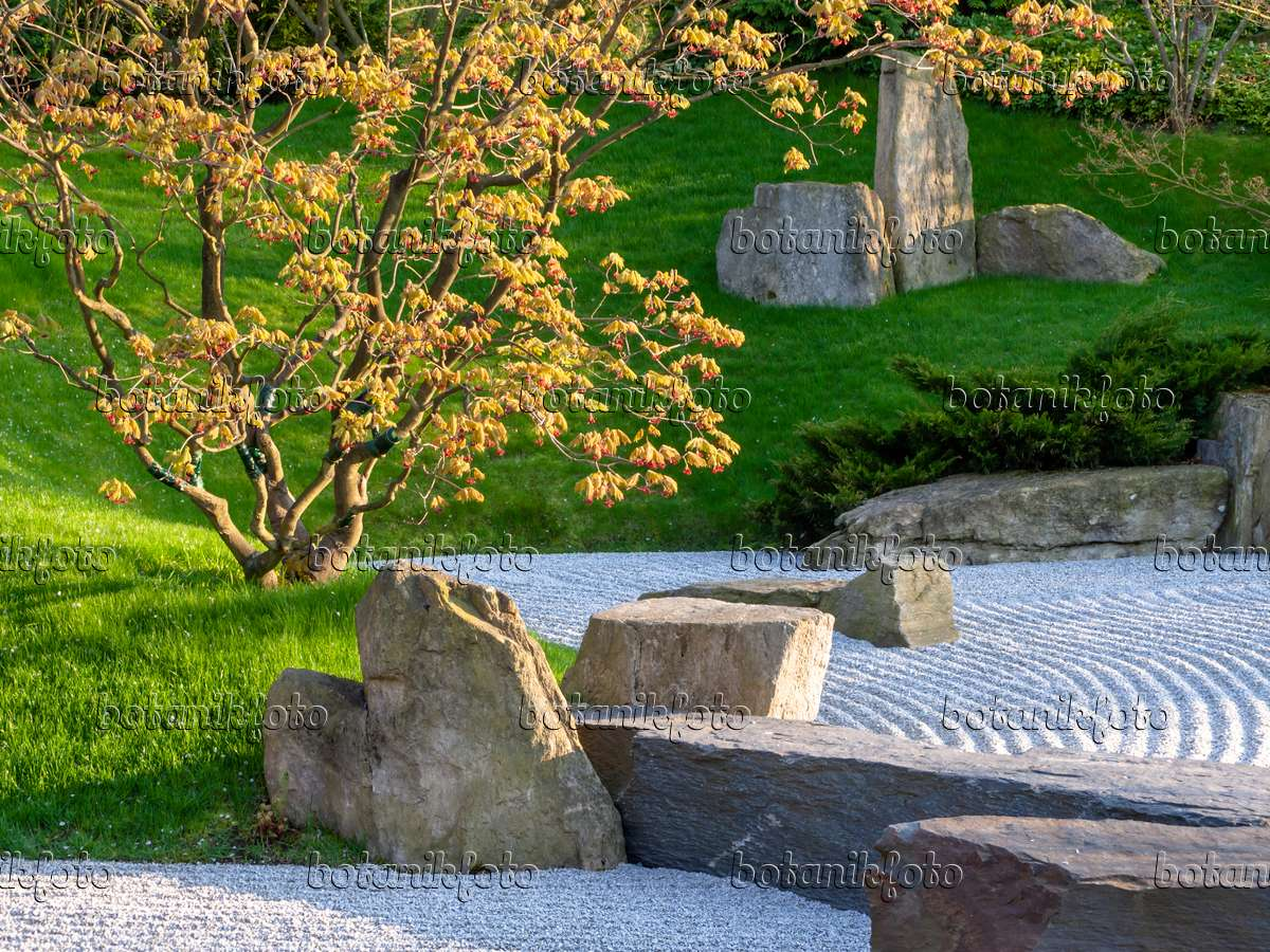 image dry landscape garden japanese garden erholungspark marzahn berlin germany 437128. Black Bedroom Furniture Sets. Home Design Ideas