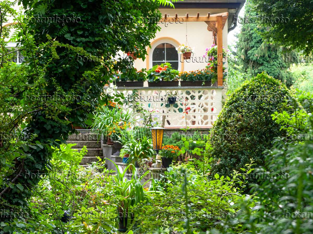 Image Front garden with dense planting and stone staircase leading ...