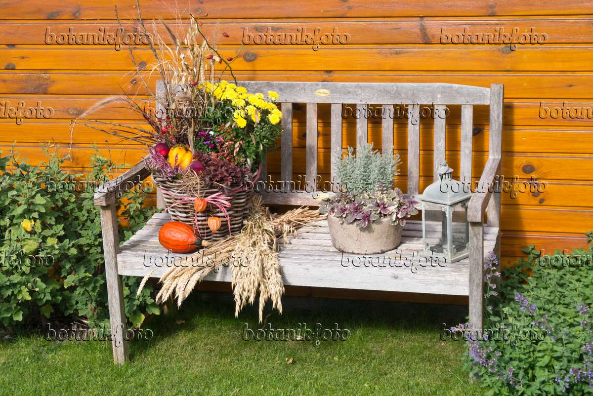 Image Garden Bench With Autumn Decoration 549167 Images And