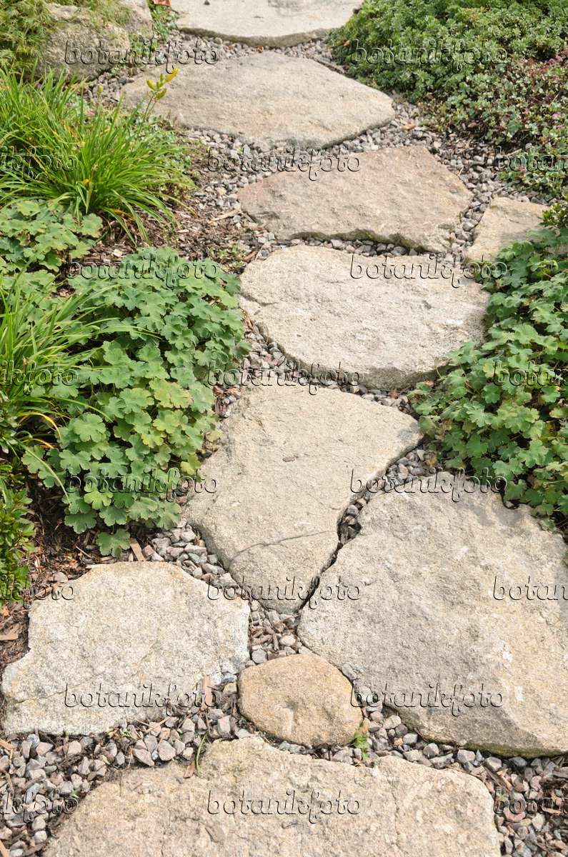image garden path with raw stone slabs embedded in gravel 536133 images and videos of plants. Black Bedroom Furniture Sets. Home Design Ideas