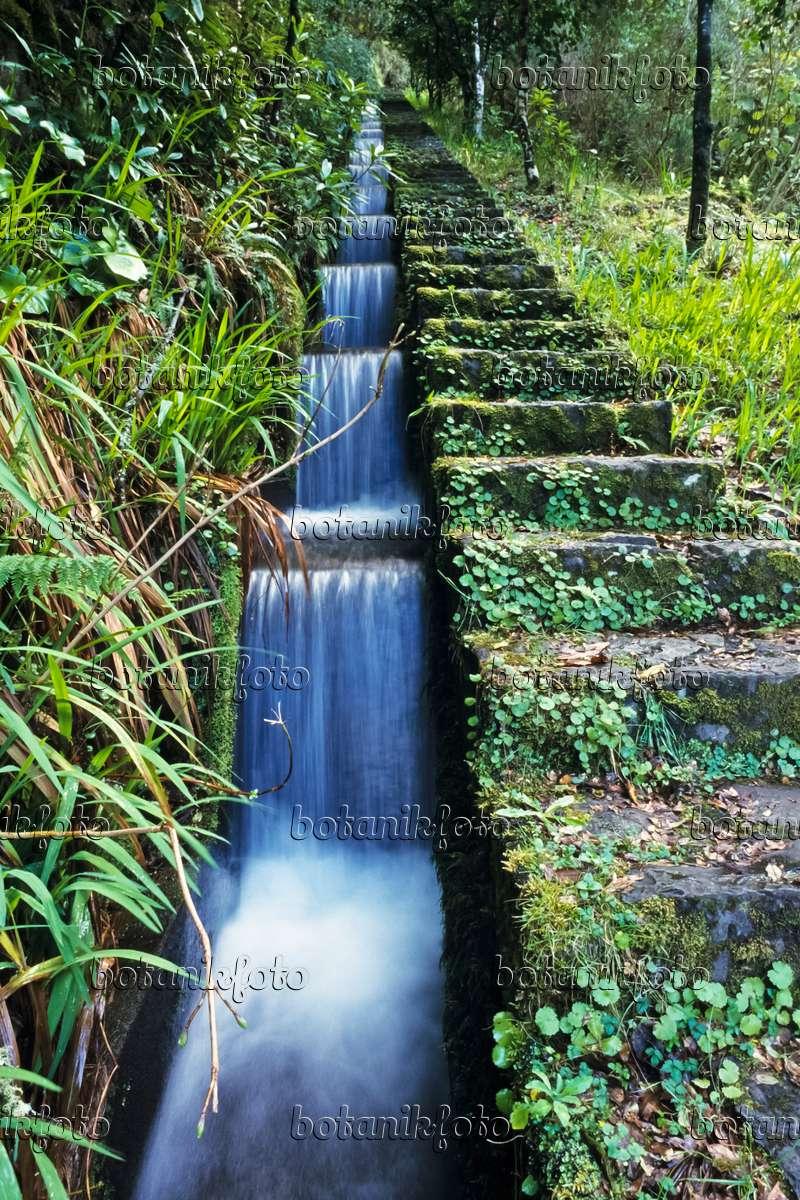Image Hiking Trail At A Levada Ribeiro Frio Madeira