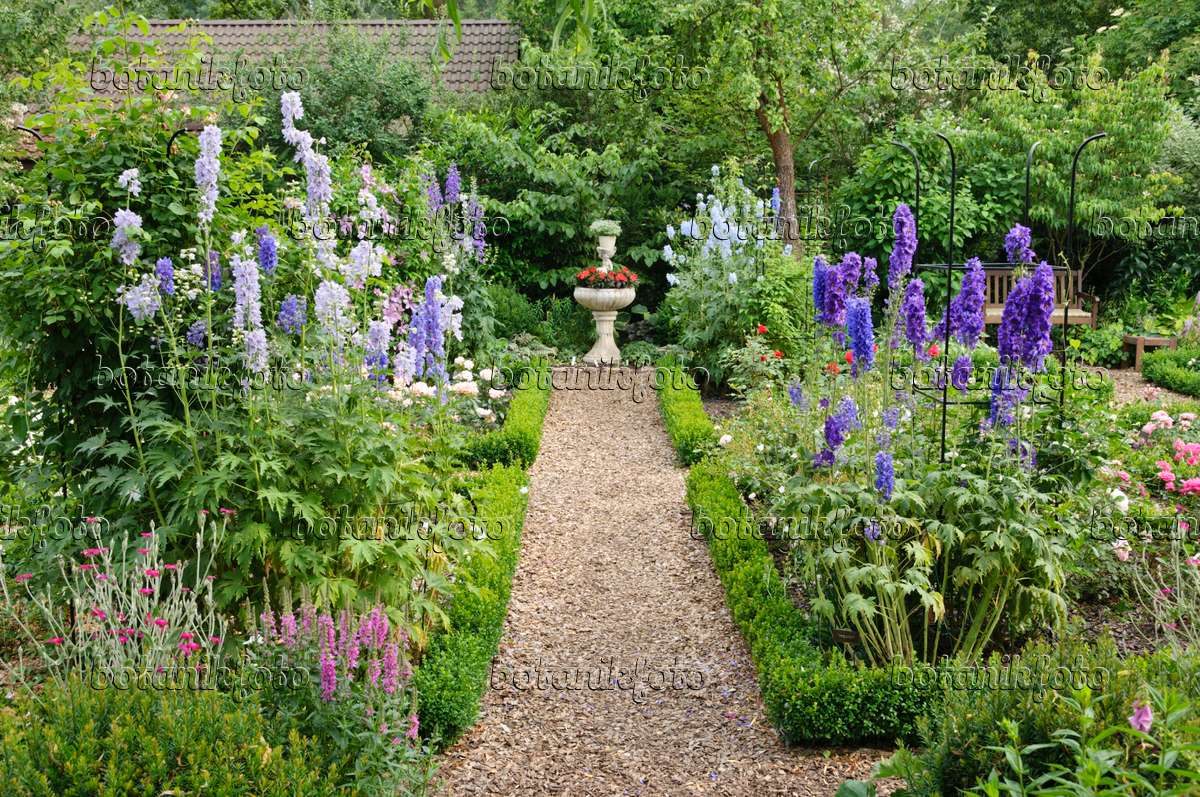 Bright delphiniums will spice up your borders, says Nigel Colborn ...