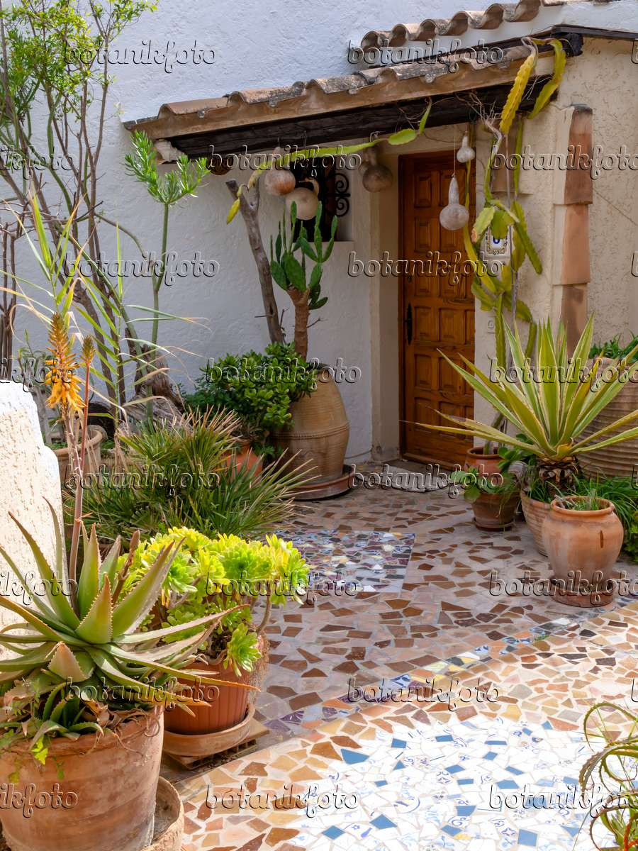 images mediterranean gardens - images and videos of plants and, Garten und erstellen
