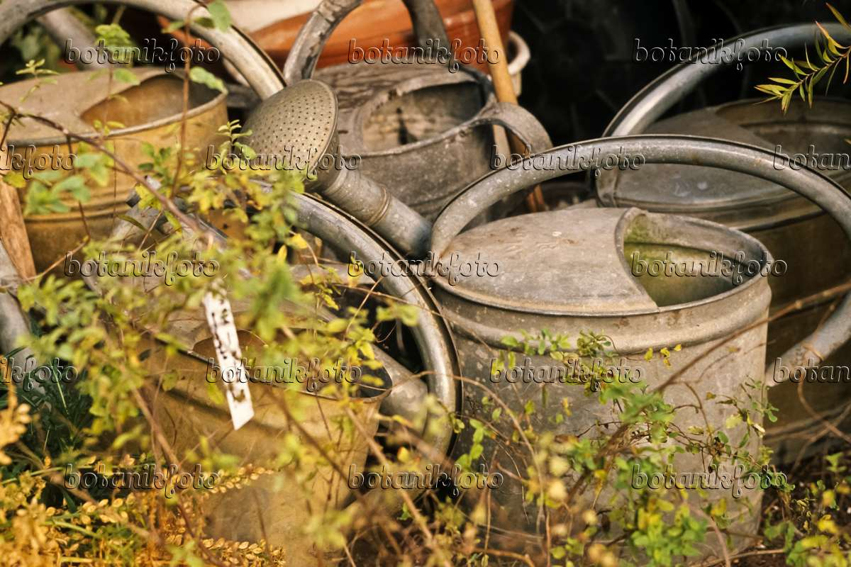 436137 Old Watering Cans Made Of Sheet Metal