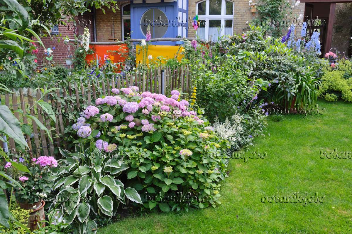 Image Perennial Border In A Backyard Garden 473237