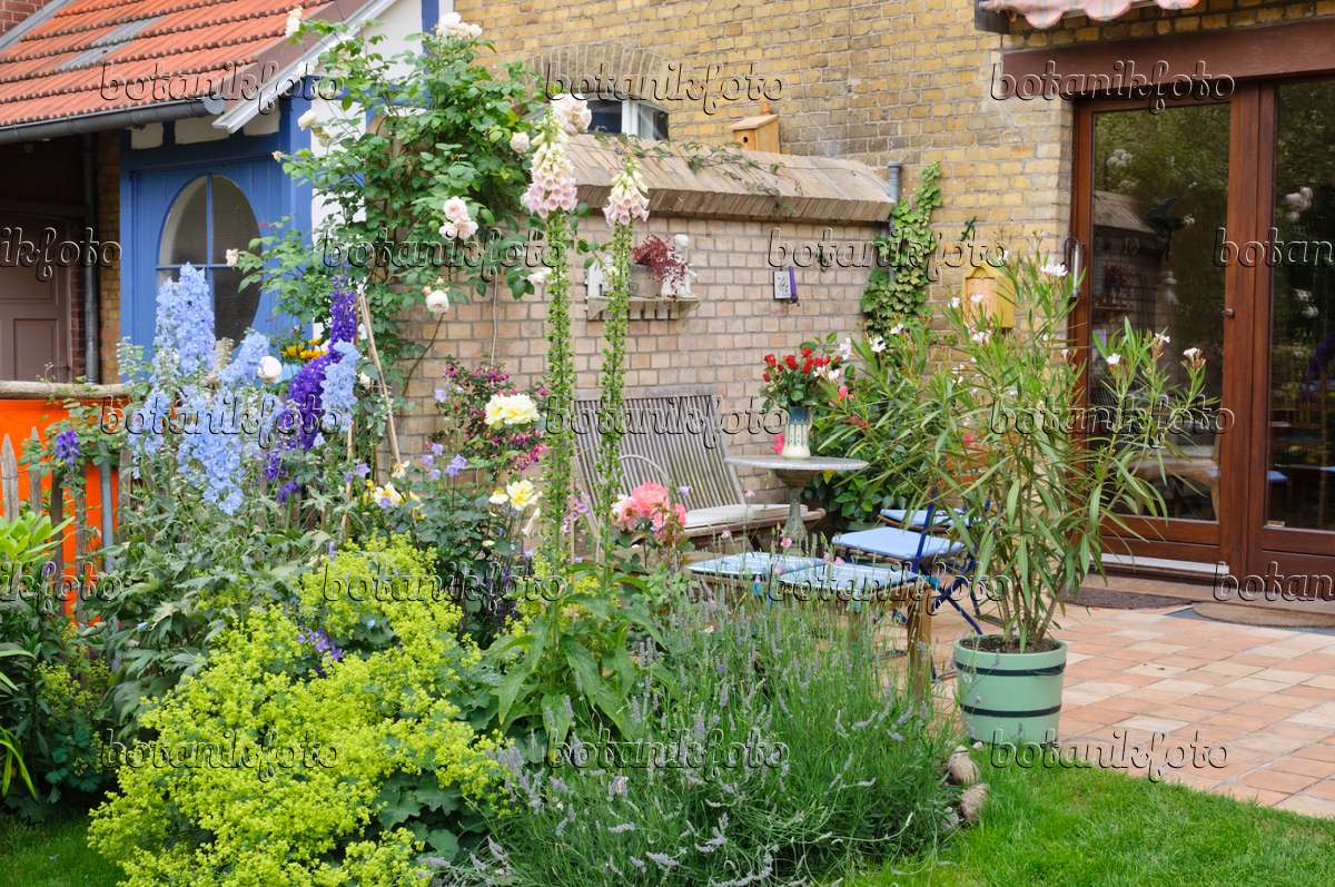 Image perennial border and terrace in a backyard garden 473262 images and videos of plants - Lay outs garden terrace ...