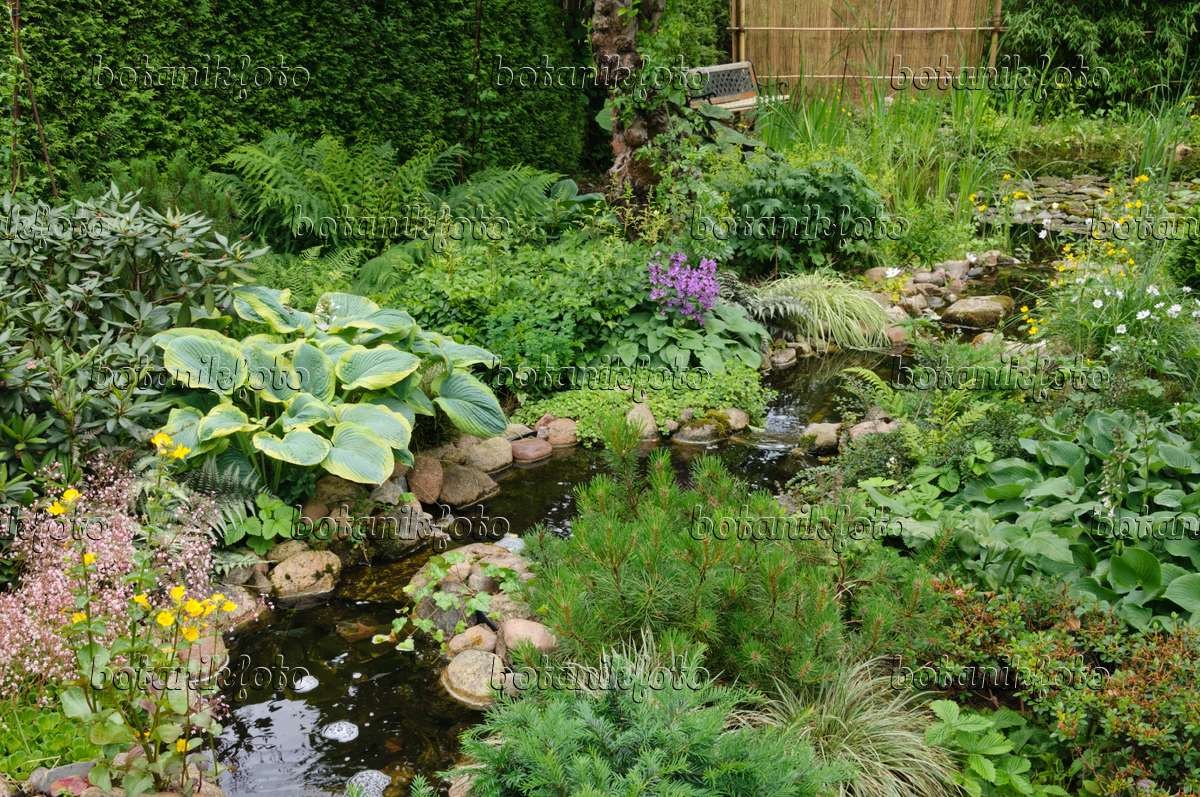 Image Perennial garden with brook - 473088 - Images and videos of ...