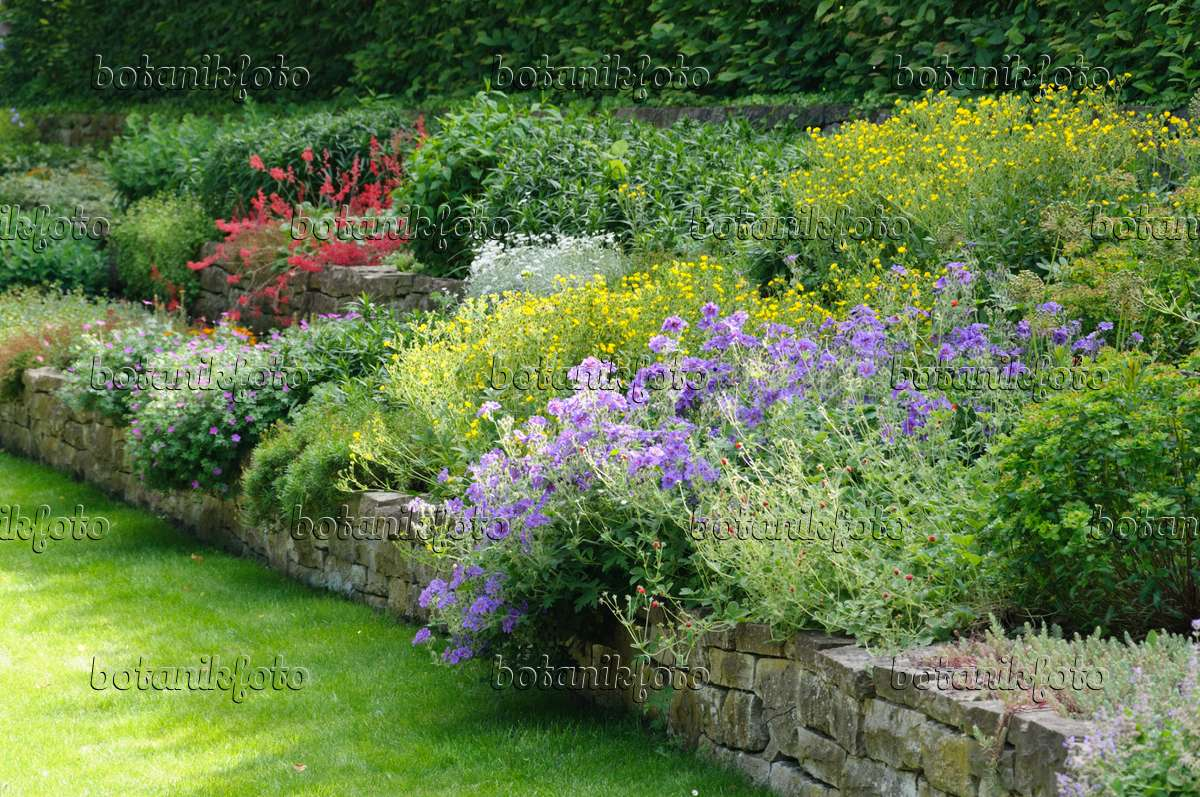 Image perennial garden with dry stone wall 485114 for Perennial garden pictures