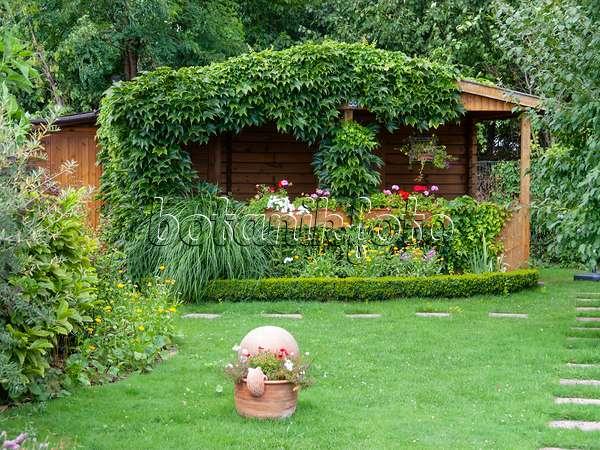 Bild Gartenlaube Mit Kletterpflanzen - 464044 - Bilder Und Videos ... Gartenlaube Pergola Begrunen
