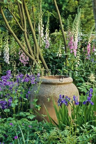 bild blaue gartenst hle und gartentische in einem staudengarten mit wiesenschwertlilie iris. Black Bedroom Furniture Sets. Home Design Ideas