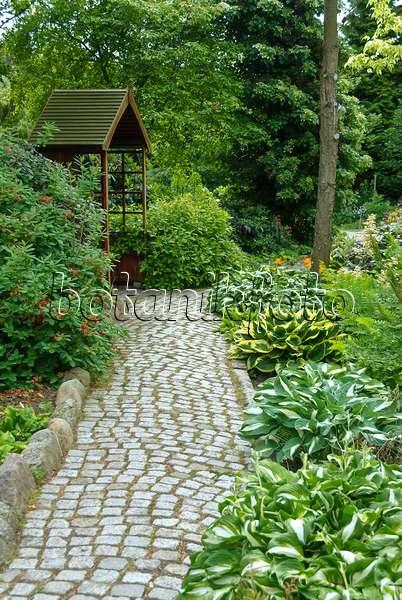 bild schattengarten mit funkien und farnen 473108 bilder und videos von pflanzen und g rten. Black Bedroom Furniture Sets. Home Design Ideas