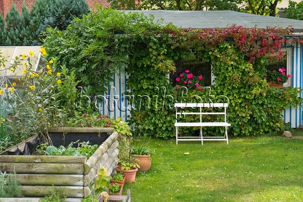 bild gartenhaus mit sitzplatz in einem naturnahen garten. Black Bedroom Furniture Sets. Home Design Ideas