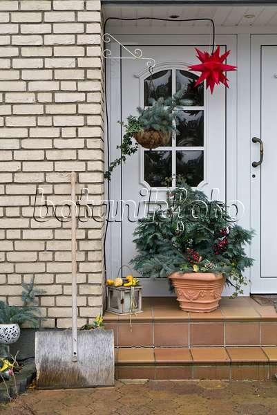 bild hauseingang mit weihnachtsdekoration 527029 bilder und videos von pflanzen und g rten. Black Bedroom Furniture Sets. Home Design Ideas