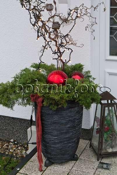 bild weihnachtlich geschm ckter hauseingang 483055 bilder und videos von pflanzen und g rten. Black Bedroom Furniture Sets. Home Design Ideas