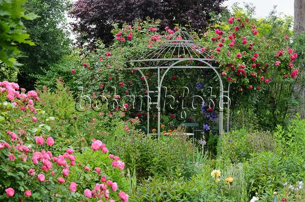 Bild Gartenpavillon, Altmann-garten, Caputh, Deutschland - 433200 ... Garten Pavillon Tropische Pflanzen