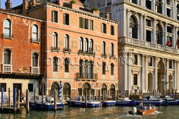bild palazzi am canal grande venedig italien 568064 bilder und videos von pflanzen und. Black Bedroom Furniture Sets. Home Design Ideas