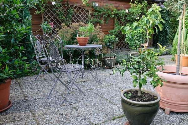 bild sitzgruppe mit topfpflanzen im garten 442067 bilder und videos von pflanzen und g rten. Black Bedroom Furniture Sets. Home Design Ideas