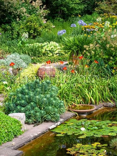 bild staudenbeet mit taglilien 474456 bilder und videos von pflanzen und g rten botanikfoto. Black Bedroom Furniture Sets. Home Design Ideas
